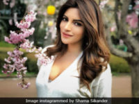 Shama Sikander: TV Is Still Stuck In The Past